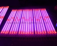 Best Selling DIP/SMD 15W LED Grow Light Tube Light T8 T5 1.2 meter 288*0.06W for Greenhouses Hydroponic Systems Indoor