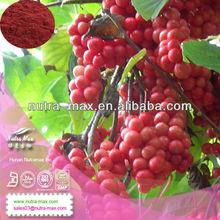 NutraMax Supply Schisandra Extract, Fructus Schisandrae P.E.10%-98% Schisandrins by HPLC