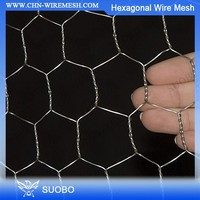 Gabion Wire Mesh Cages High Quality Pvc/ Galvanized Hexagonal Wire Mesh For Chicken/Animal/safety Fence Hexagonal Mesh(Factory)
