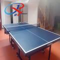 deportes de interiores de tenis de mesa de la superficie del piso