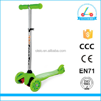 Structural Disabilities Micro Foot Push Scooter
