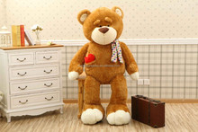 brown teddy bear with love heart in his pocket