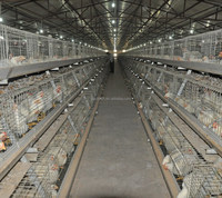 POUL TECH Broiler chicken breeding cage plastic chicken cage