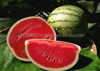 Sweet water melons from South Africa