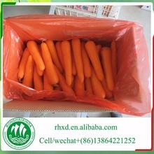 import fresh carrots