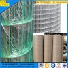 Pvc Painted 6X6 Plastic Coated Welded Mesh