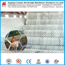 Anping factory Hexagonal wire mesh for sale