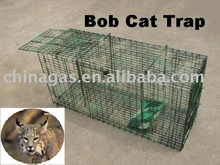Bob cat live animal box trap