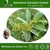 3W Offer gymnema sylvestre extract,gymnema sylvestre extract 25% gymnemic acids,gymnema sylvestre extract 75%