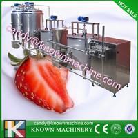 0.5T/H small scale milk processing machine / milk processing machinery price