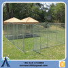 Beautiful elegance sleek pretty metal cheap dog kennels wholesale