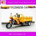 De carga de moto, vehículo de tres ruedas popular en china con la personalización de servicio