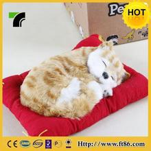 Economic top sell activity cat toy