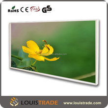 Bathroom infrared wall heater with customized painting A-P1206(6172)