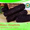 2015 hot sale new products for organic maize