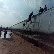 plastic sheet greenhouse cover for sale