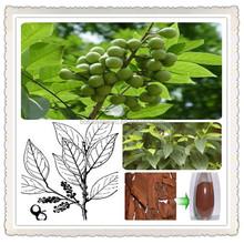 pygeum africanum extract/pygeum africanum extract powder/pygeum africanum bark extract