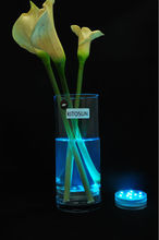 Pottery vase Decoration Remote Controlled Led Submersible Light Base