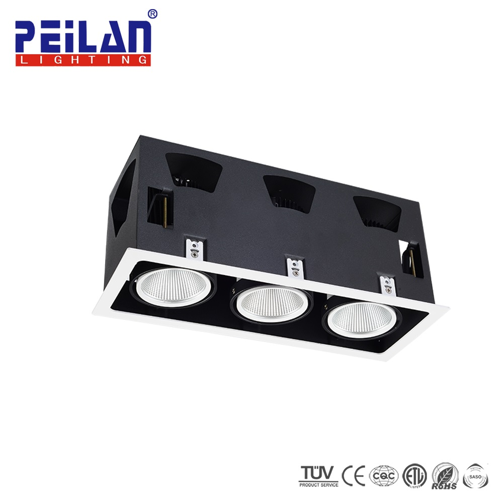 Peilan la iluminación general solución productos más vendidos 10 W 20 W 30 W LED spots barato proyector del techo