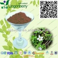 Brahmi herbs extract/ Bacopa Monniera extract /Bacopaside 20%, 30%, 50%