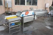 Shenghui factory selling plum washing machine wl-24