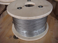 35(W)x7 Good quality and standard size steel wire rope very hot sales!