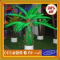 2014 mais novo todos os tipos de palmeiras luz com CE ROHS GS BS UL SAA