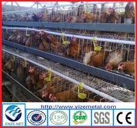 wire mesh , steel wire mesh material and chicken use africa/nigeria farm automatic poultry equipment for layer chickens