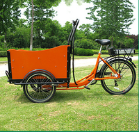 2015 hot sale 3 wheels electric cargo bike / trike / tricycle / bicycle for family