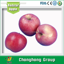Class A fresh red Star Apple