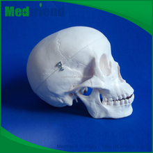 MFM004 Wholesale China Merchandise Plastic Human Skull