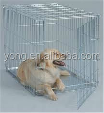 custom dog cage double