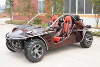 1100cc beach buggy