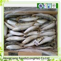 2015 good quality frozen sardine