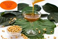 venta de grado de alimentos líquidos lecitina de soja