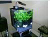 acrylic aquariums wholesale acrylic fish tank with mini air pump