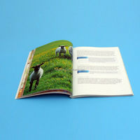 Full color Magazine Printing/Catalogue/Brochure Printing