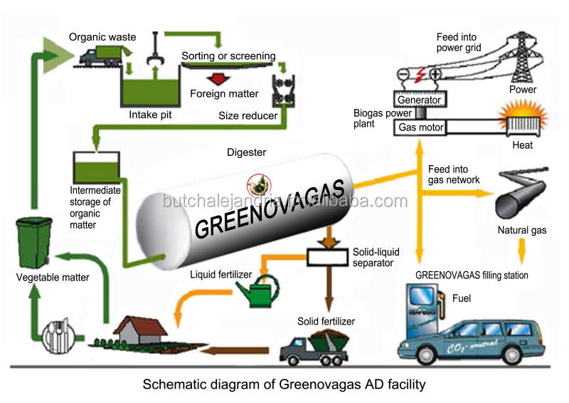 online Biofuels: Biotechnology, Chemistry, and Sustainable