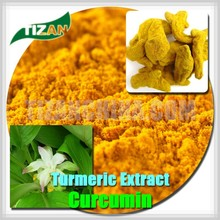 natural high grade curcumin extract 95%