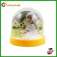 Plastic Photo Frame Snow Globe With Glitters&Powders