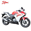 New Design Chinese Cheap 300CC Motorcycles 300cc Racing Motorcycle 300cc Sports bike For Sale Rapid300N
