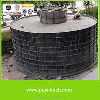 PUXIN biogas plant /machine /system for Slaughter house sewage water treatment price