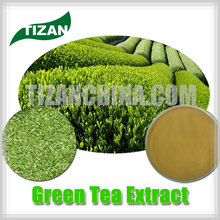 high quality Green Tea Extract with best price