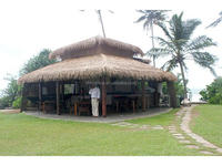 plastic fireproof recycled palm leaf roofing for gazebo