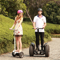 wholesale self balancing electric powered cheap gas go karts