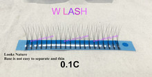 Fashion and newly designed Y lashes W lashes M lashes eyelash extension with high quality