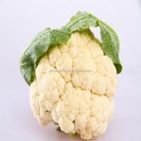 Hua ye cai zhong zi white flower seed for Cauliflower Seed with broccoli Seeds