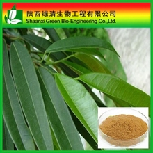 15% 25% Natural Salicin White Willow Bark P.E/Salicin White Willow Bark Extract/ High Quality Methol Solvents/Salicin