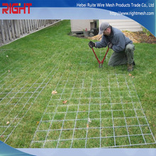 Corrosion Resistant High Quality Low Price High Tensile Fied Wire Mesh Fence for Sale