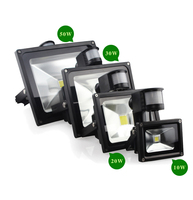 SOTGC10Y1 10w mini 24 volt outdoor stainless steel pir led flood light
